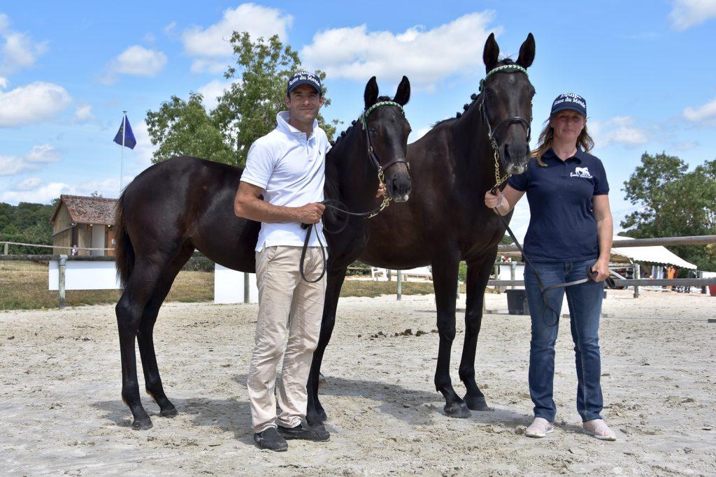 Meilleur couple jument foal 6