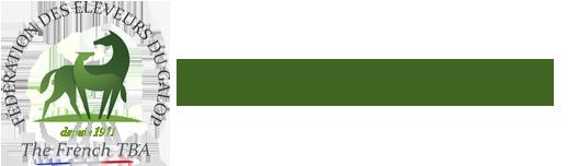 logo fédération des éleveurs du galop