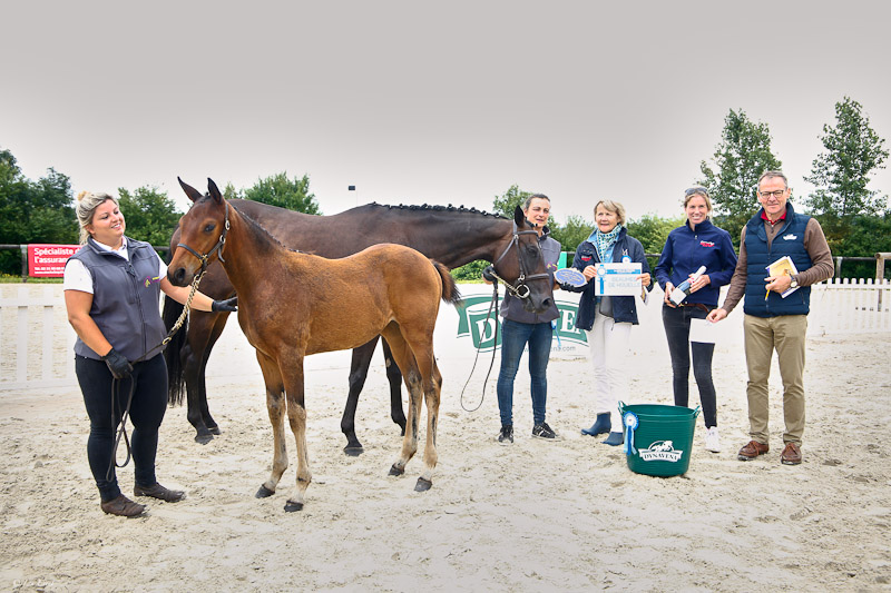 Champion Supreme des Foals 2021